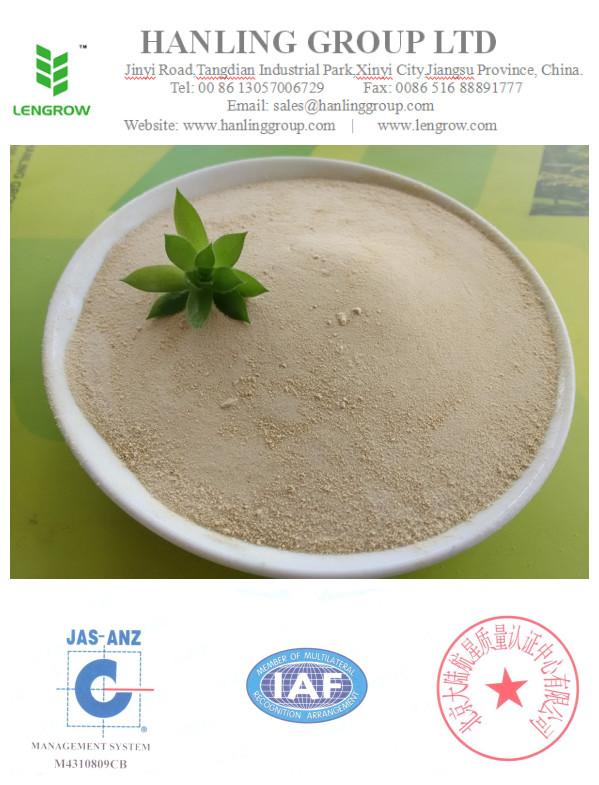 water soluble organic fertilizer-amino acid powder 50%