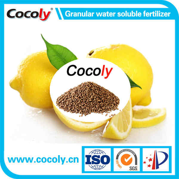 China manufacturer special fertilizer 100% water soluble cocoly