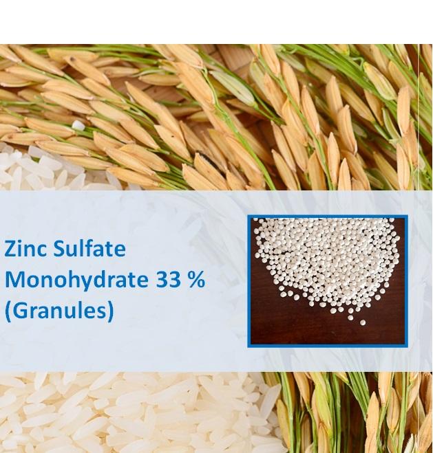 Zinc Sulphate Monohydrate 33% Granular